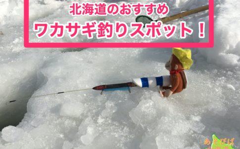 北海道のおすすめワカサギ釣りスポット