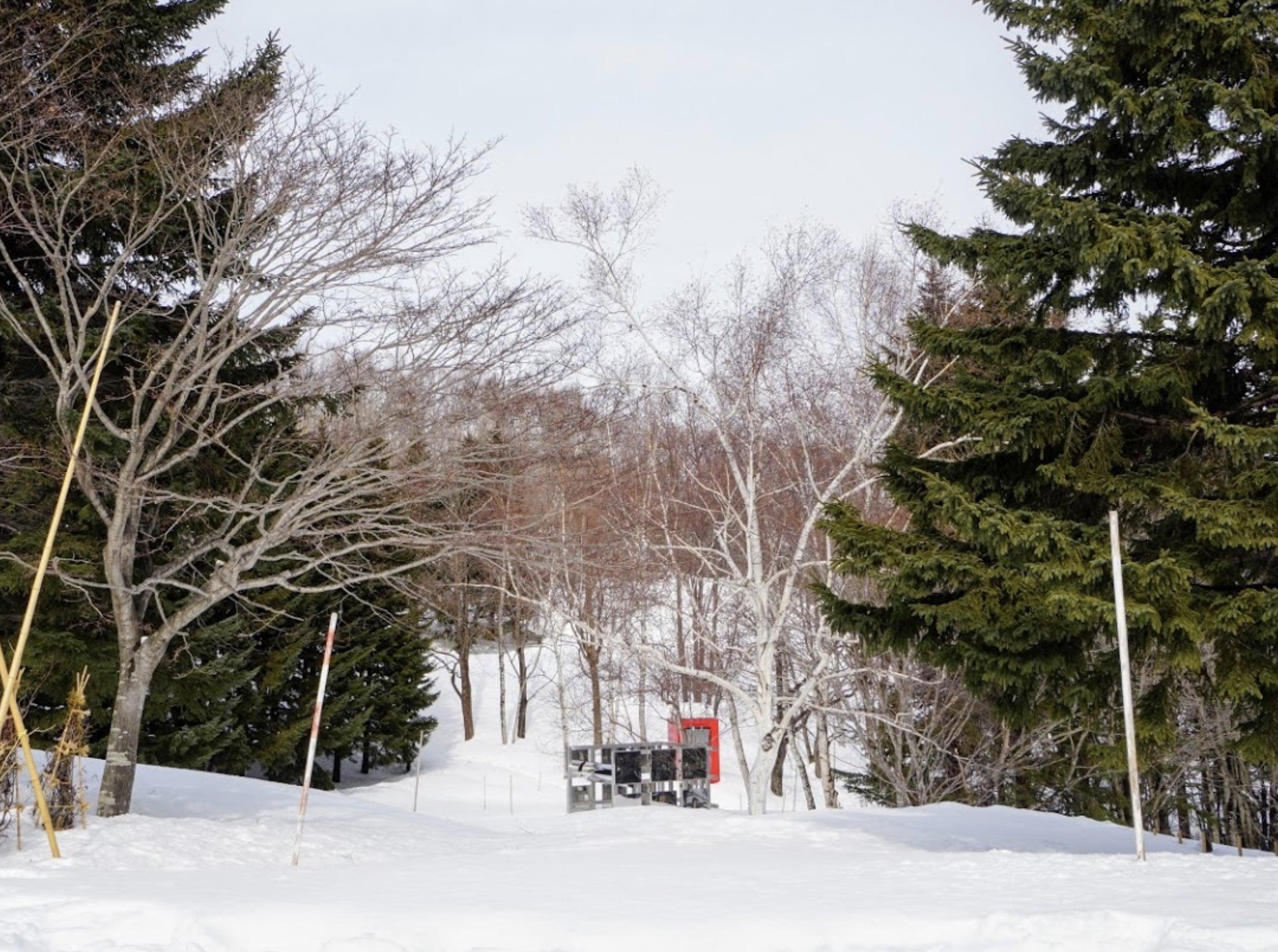 冬の芸術の森