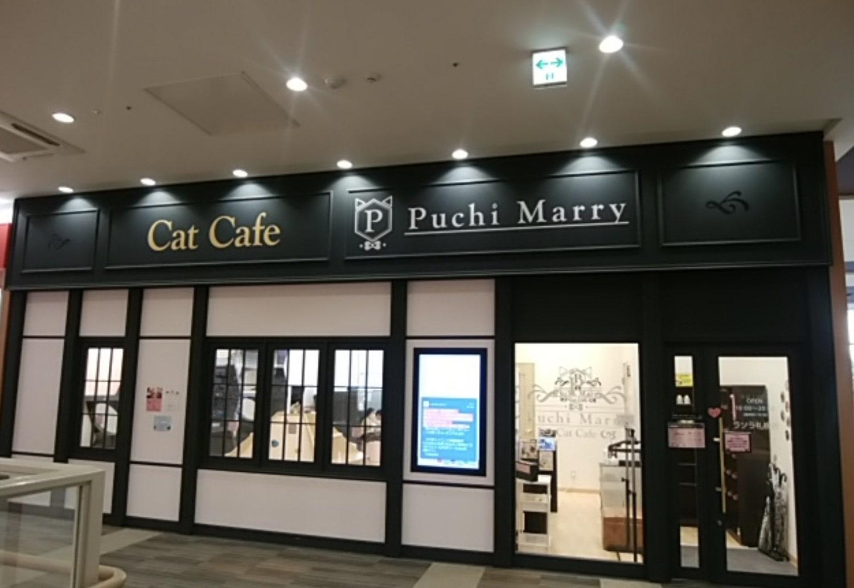 Puchi Marry ラソラ札幌店