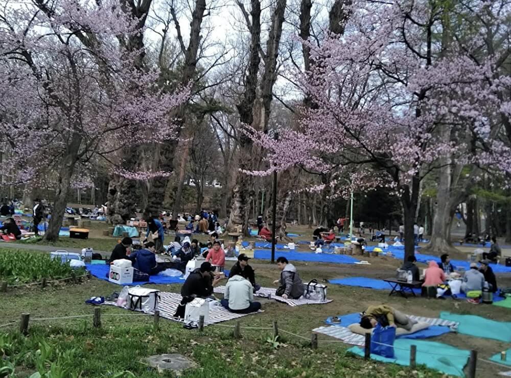 円山公園でBBQ