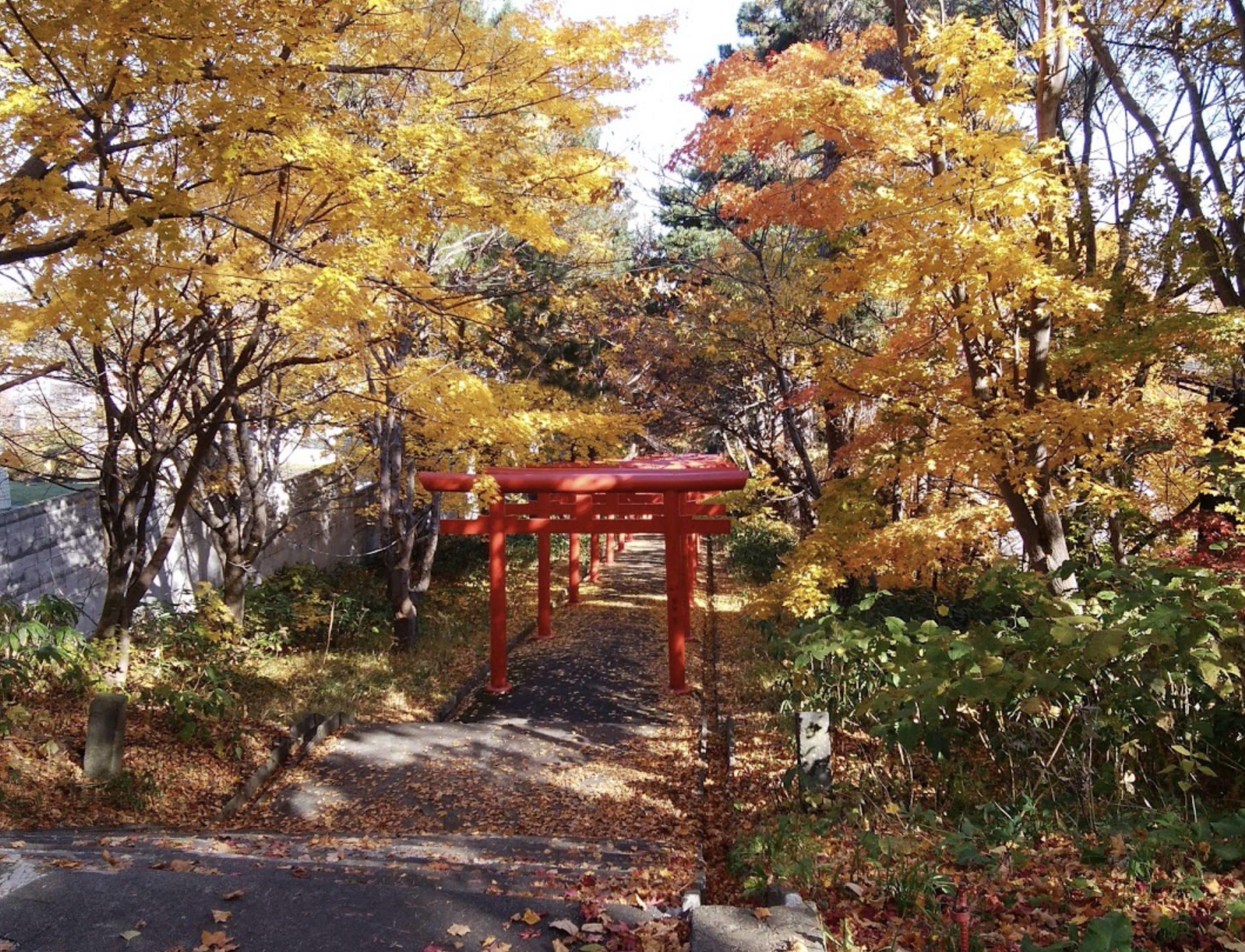 札幌伏見稲荷神社の紅葉