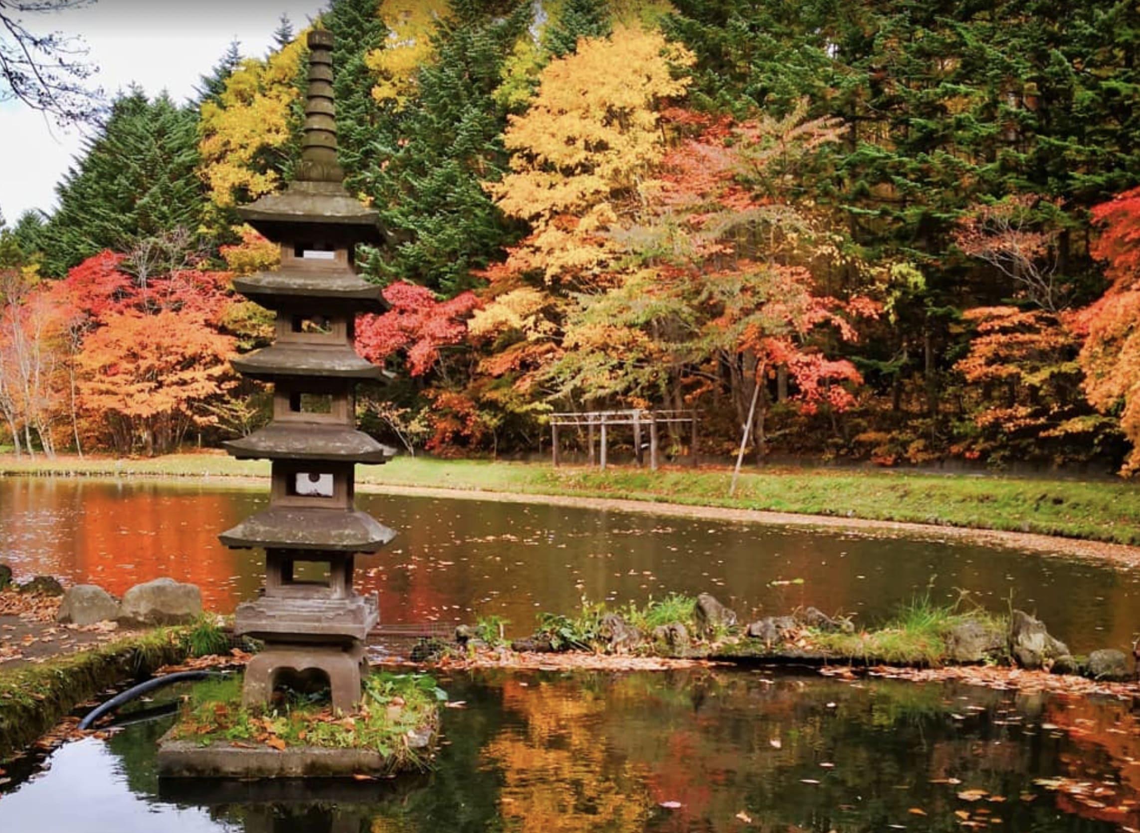 紅桜公園の紅葉
