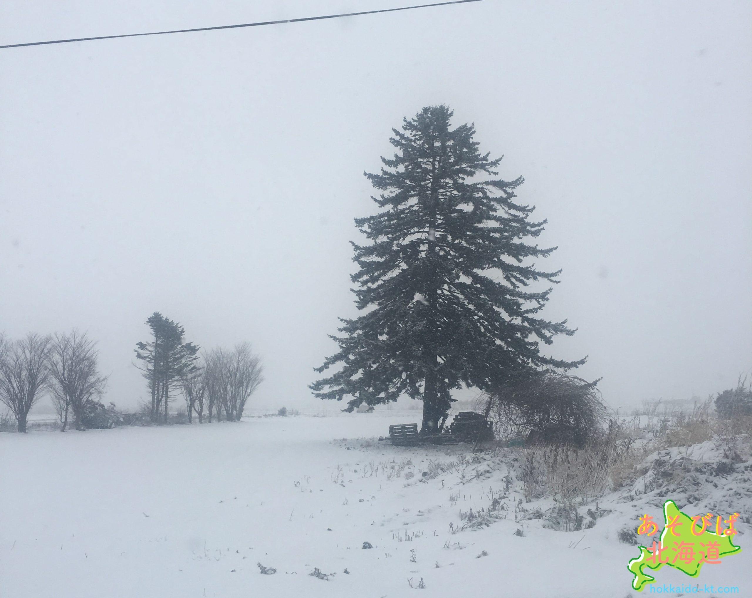 冬の北海道の景色