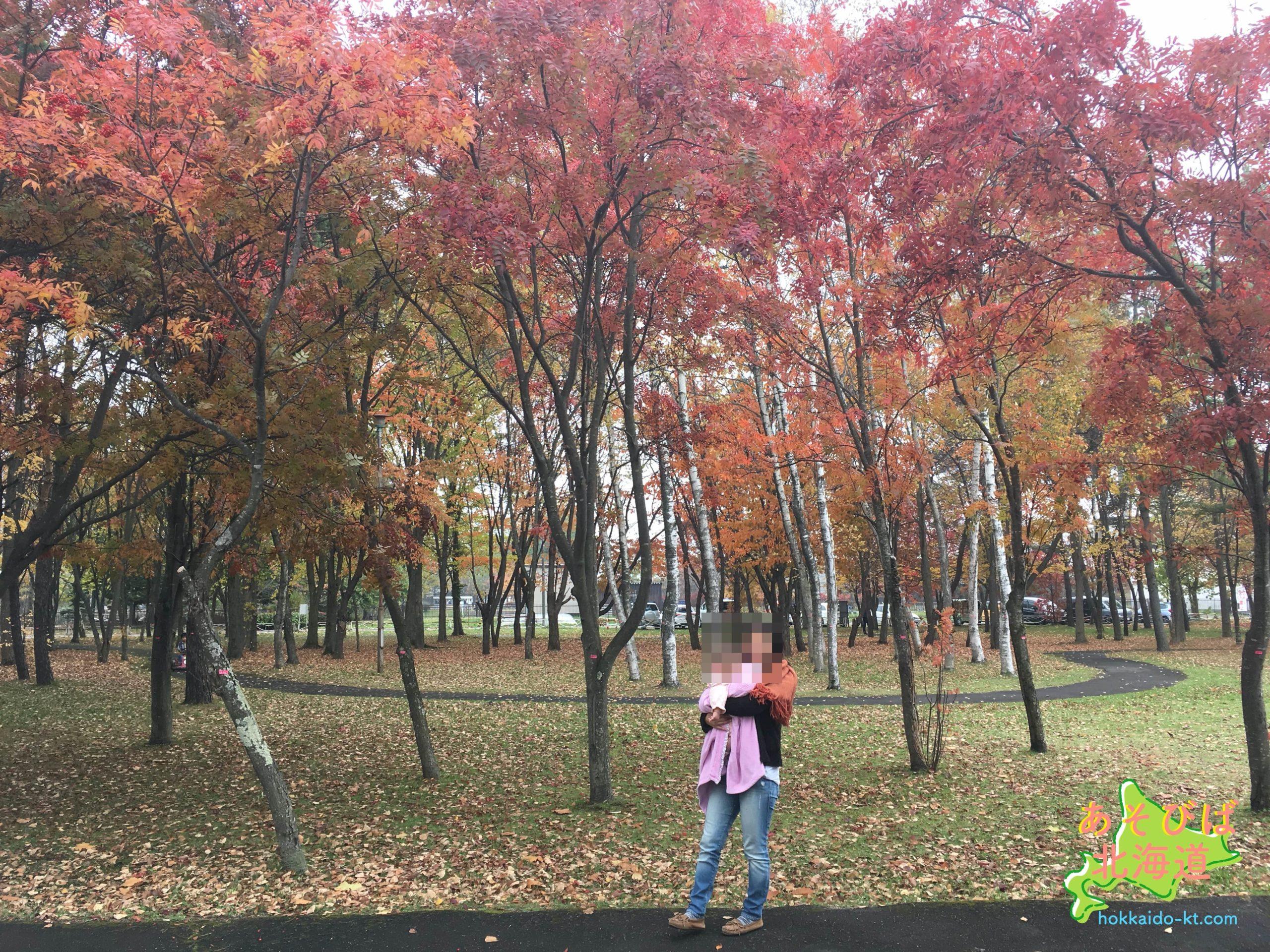 函館香雪園の紅葉