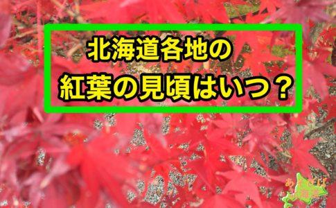 北海道の紅葉の時期・見頃はいつ?
