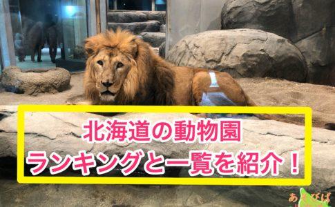 北海道の動物園ランキングと一覧を紹介