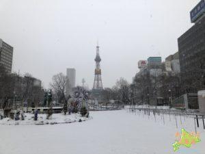 冬の札幌の風景