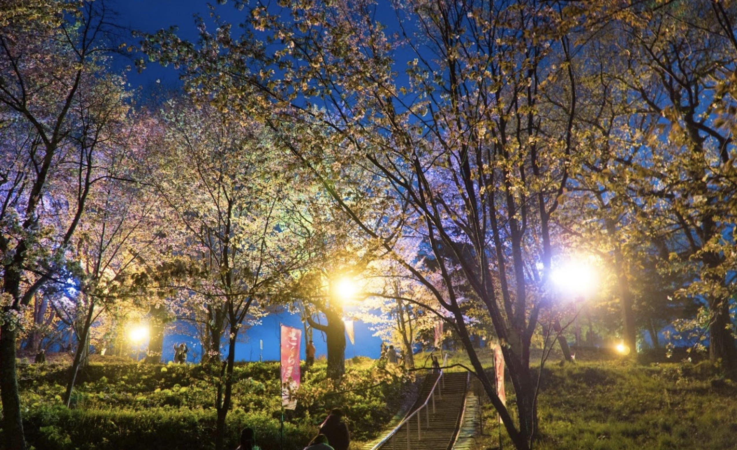 金毘羅さくら公園