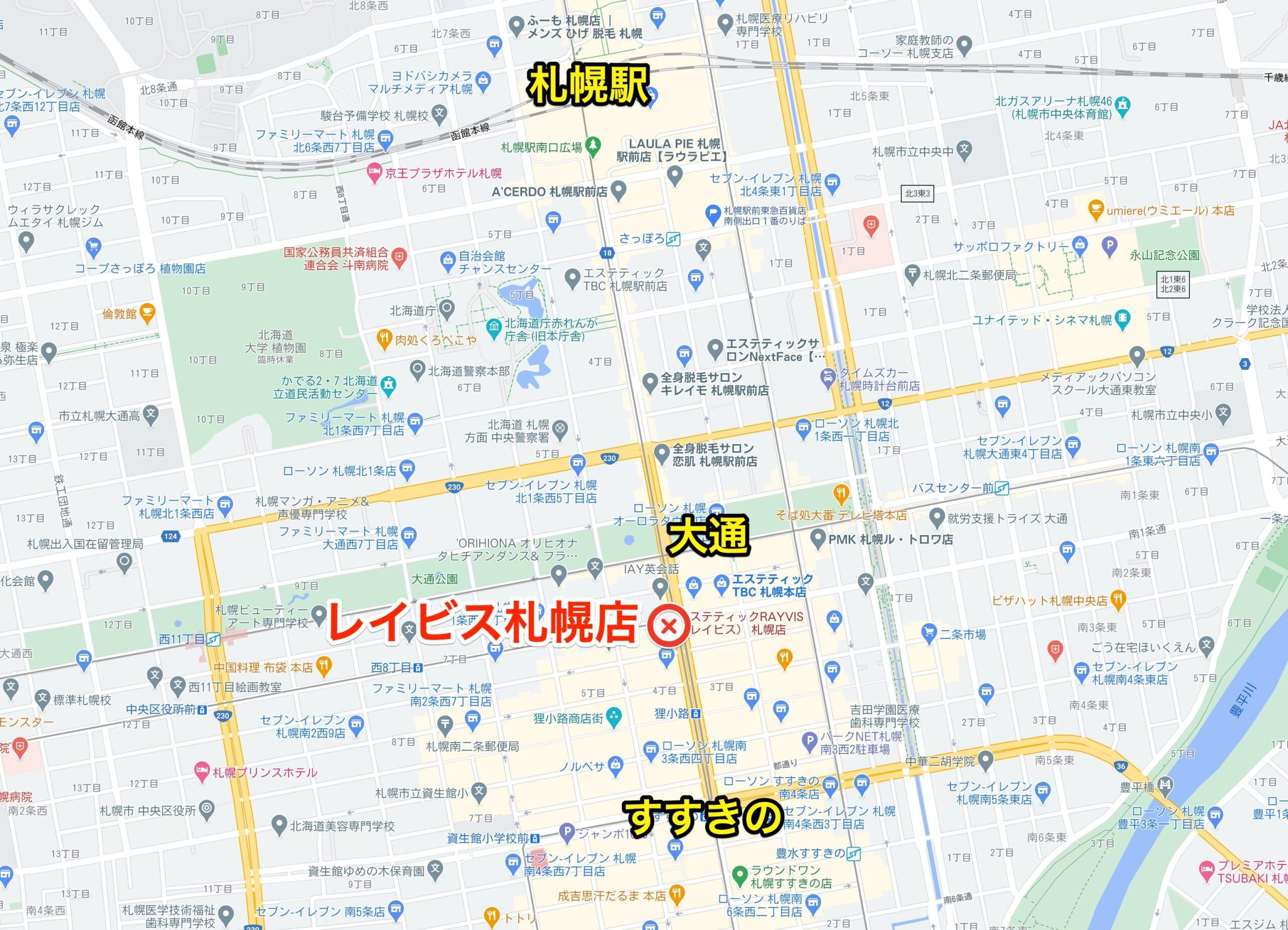 レイビス札幌店地図
