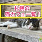 札幌の猫カフェ一覧