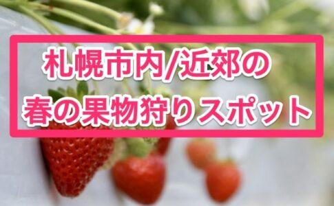 札幌市内近郊の春の果物狩りスポット