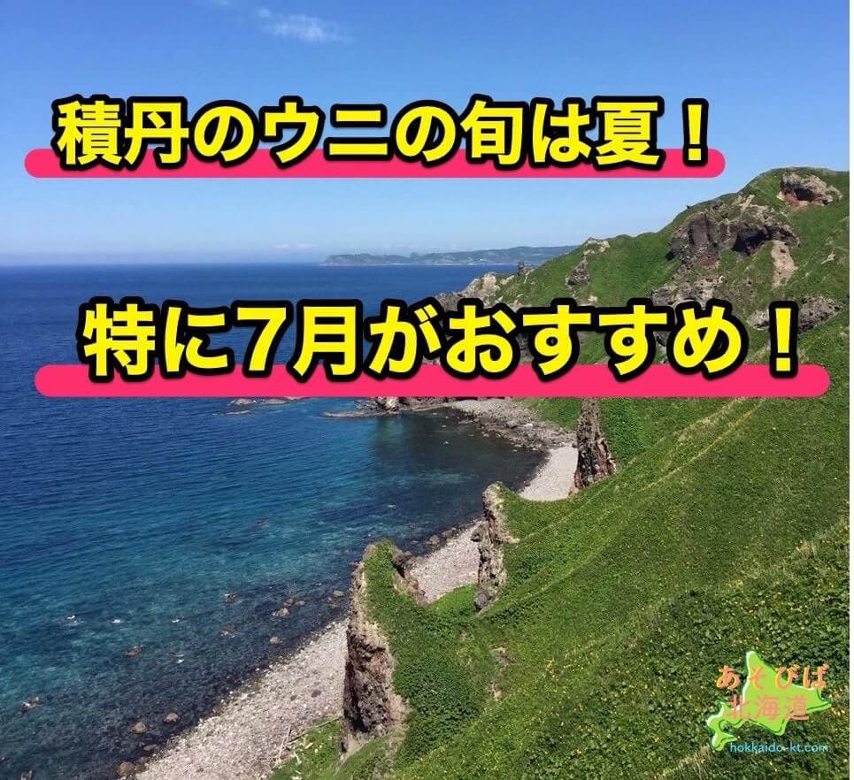 積丹のウニの旬は夏!特に7月がおすすめ!