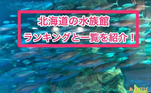 北海道の水族館ランキングと一覧を紹介